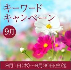 9月のキーワードキャンペーン